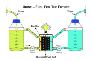 waste to energy 10