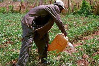 Ten Low Cost Irrigation Techniques