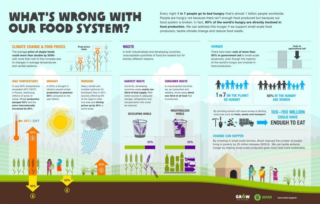food-production-infographic