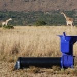 EarthAuger for giraffes