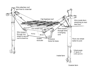 A top-bar hive hangs from fence posts in this diagram from the Beehive Fence Construction Manual. Image courtesy of the Elephants and Bees Project