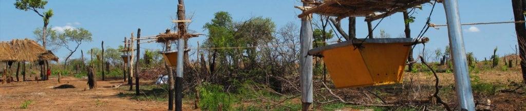mozambique-banner