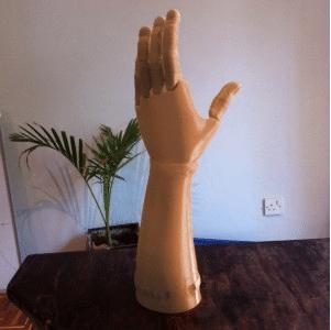 Life Arm