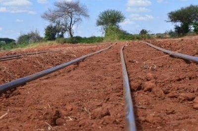 Mnyunyizi Drip Irrigation Kit